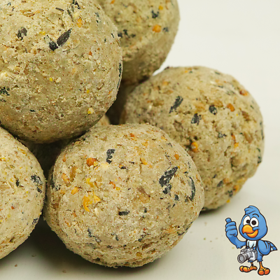 BusyBeaks Suet Fat Balls - High Energy Feed Wild Garden Bird Food Treats 2