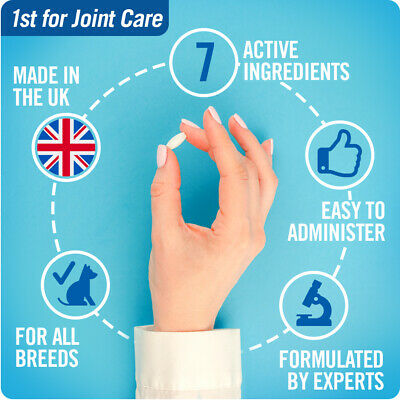 JOINTSURE Dog Joint Supplement More Active Ingredients Than The Leading Brand 4