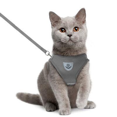 Cat Walking Jacket Harness Leash Escape Proof Adjustable Pet Puppy Dog Mesh Vest 2