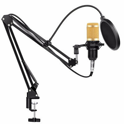 Professional Studio Condenser Microphone Kit Recording Broadcasting Shock Mount 2