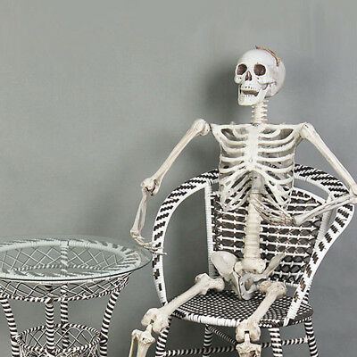 5.6ft Halloween Poseable Human Skeleton Full Life Size Props Party Decoration 5