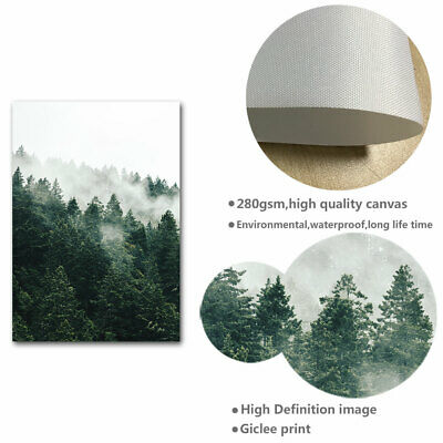 Misty Foggy Forest Nature Scenery Poster Nordic Landscape Canvas Wall art Print 5
