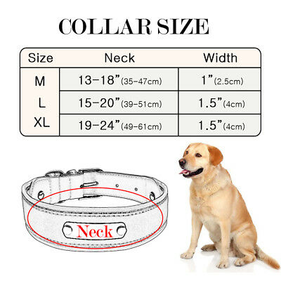 Reflective Personalized Dog Harness Padded Leather Large Dogs Engraved Collar 2