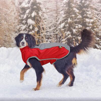 Dog Winter Coat Waterproof Pet Reflective Fleece Clothes Jacket French Bulldog 10