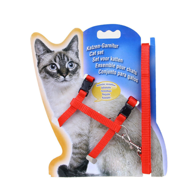 solid Cat Puppy Adjustable Harness Collar Nylon Leash Lead Safety Walking Rope 4