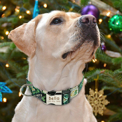 Personalised Dog Collar Heavy Duty Buckle Custom Name ID Free Engraved & D-ring 10