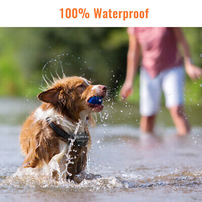 Ipets 1000ft Remote Dog Shock Collar Rechargeable Waterproof Dog Training Collar 3