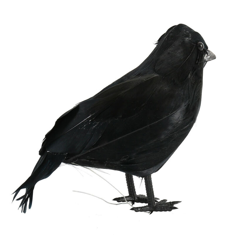 Black Lifesize Raven Movie Prop Fake Crow Halloween Fake Bird Hunting Decor EN 4