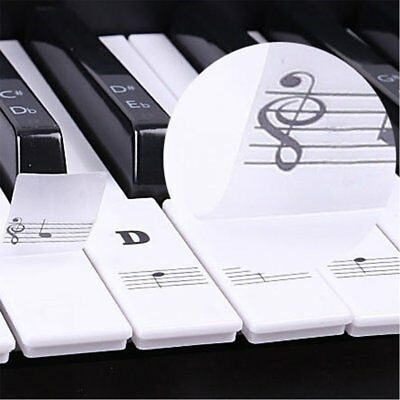Music Keyboard Piano Stickers 88/61/54/49 Key removable white Laminted stickers 3