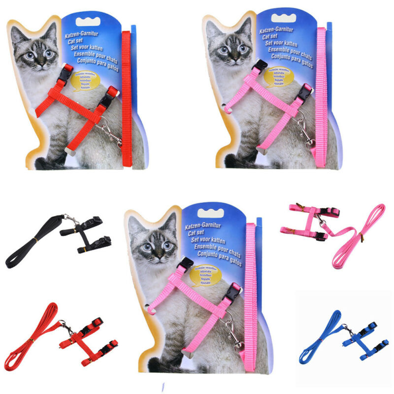 solid Cat Puppy Adjustable Harness Collar Nylon Leash Lead Safety Walking Rope 2