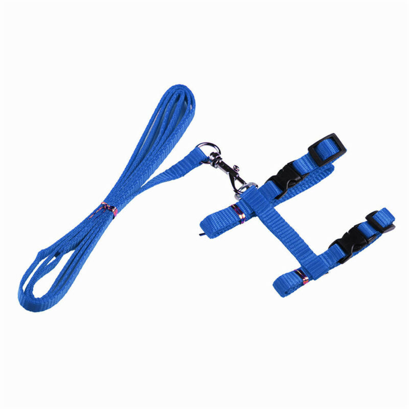 solid Cat Puppy Adjustable Harness Collar Nylon Leash Lead Safety Walking Rope 11