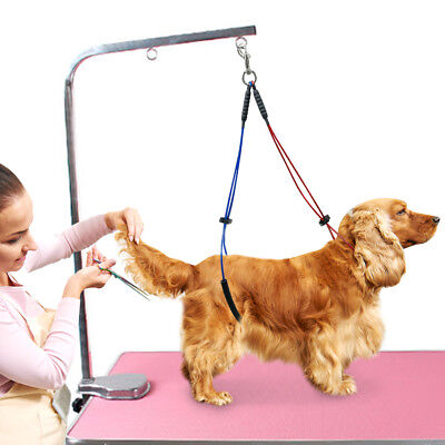 Haunch Holder Grooming Harness Noose System For Dogs Restraint No Sit Leash Loop 10