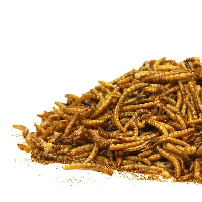 SQUAWK Dried Mealworms - Premium Quality Wild Bird Food Garden Snacks For Birds 2
