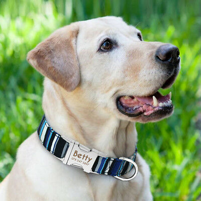 Personalized Dog Collar Heavy Duty Buckle Engraved ID Name Custom Labrador S M L 10