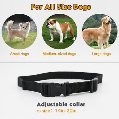 Petrainer Dog Training Shock Collar &Remote Electric Rechargeable Bark Control 3