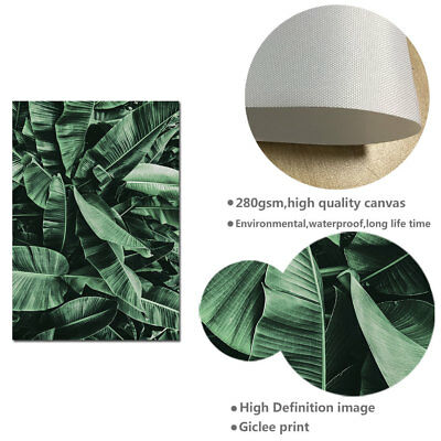 Banana Leaves Canvas Painting Wall Art Poster Quotes Nordic Print Home Decor 5
