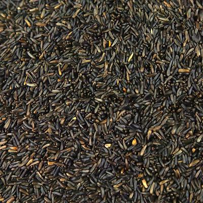 SQUAWK Niger Seeds - Quality Wild Bird Feed High Energy Garden Finch Food 3