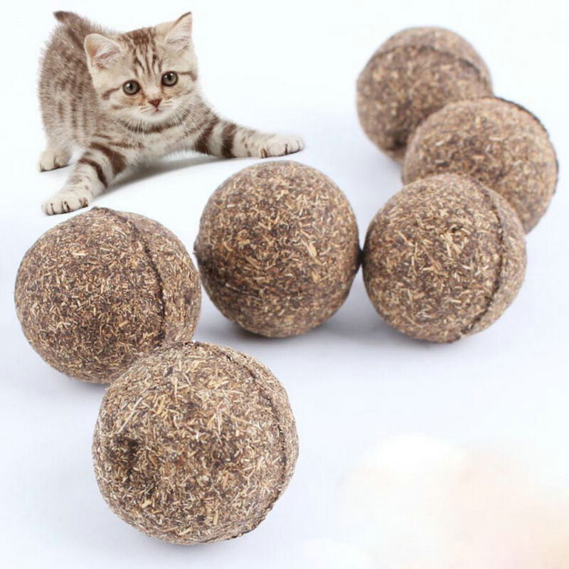 Cat Natural Catnip Ball Toys Kitten Treat Ball Cats Playing Cleaning Teeth Toy 3