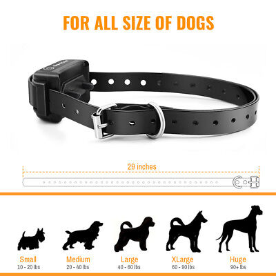 Petrainer Waterproof Rechargeable Dog Training Shock Collar With Remote 2 Dogs 9