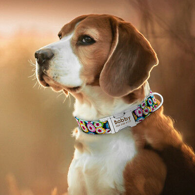 Personalized Dog Collar Heavy Duty Buckle Engraved ID Name Custom Labrador S M L 12