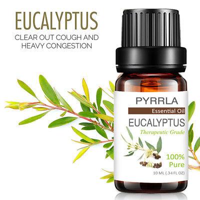 Essential Oils 100% Pure Natural Aromatherapy Therapeutic Aroma Diffuser Burner 6