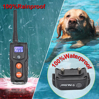 Petrainer Waterproof Rechargeable Dog Training Shock Collar With Remote 2 Dogs 8