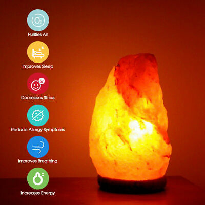 Himalayan Salt Lamp Natural Crystal Rock Shape Dimmer Switch Night Light 1-5 kg 2
