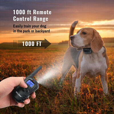 Petrainer Waterproof Rechargeable Dog Training Collar Shock Collar with Remote 5