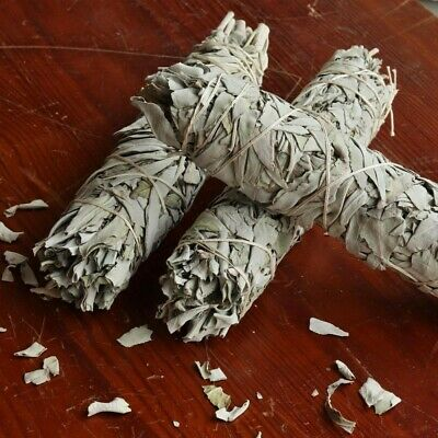 "Large Jumbo White Sage Smudge Stick: House Cleansing Energy 8-9"" 2"