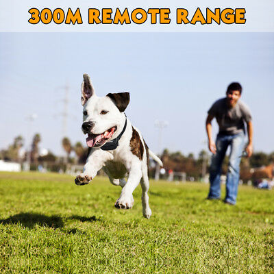 Petrainer Dog Training Shock Collar &Remote Electric Rechargeable Bark Control 6