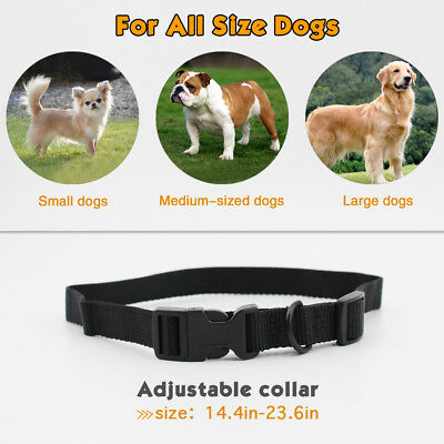 Petrainer Rechargeable Dog Training Shock E Collar for Small Medium Large Dogs 4