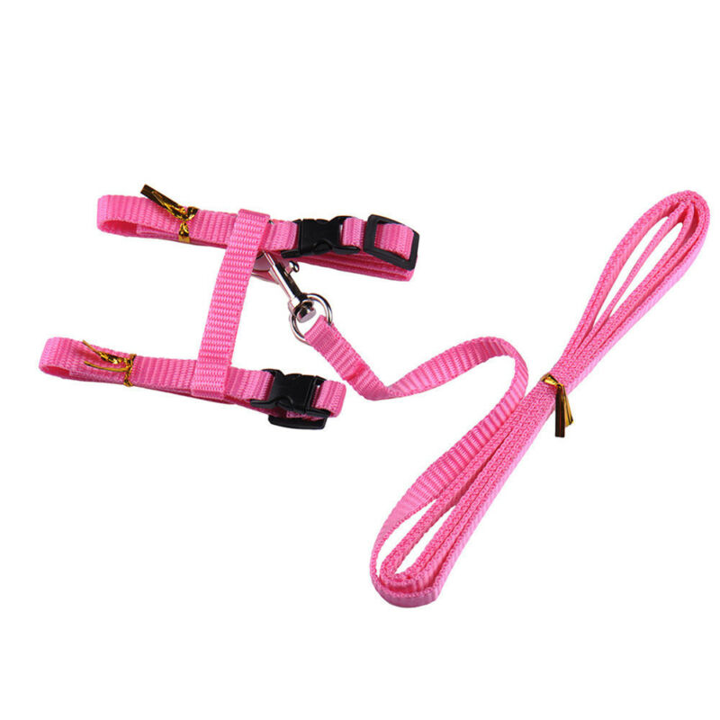 solid Cat Puppy Adjustable Harness Collar Nylon Leash Lead Safety Walking Rope 10