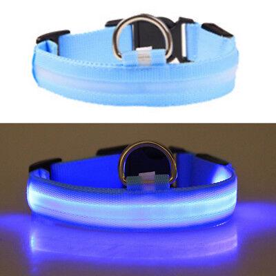 USB Rechargable LED Dog Pet Collar Flashing Luminous Safety Light Up Nylon 8
