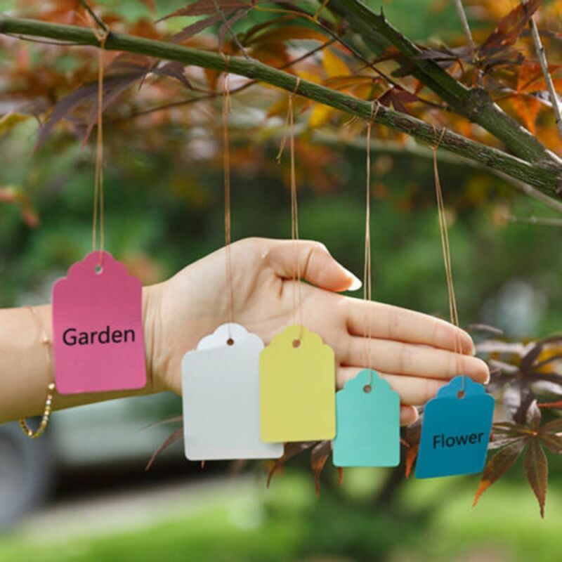 Waterproof 100pcs Strip Line Gardening Signs Labels Plant Hanging Tags Mark 2