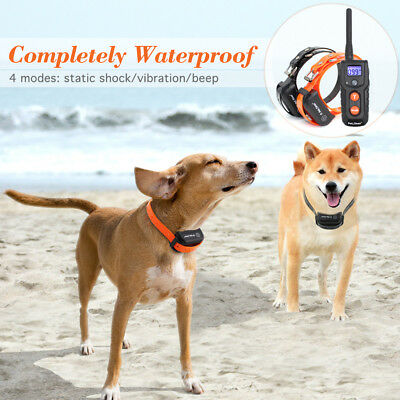 Petrainer Waterproof Rechargeable Dog Training Shock Collar With Remote 2 Dogs 7