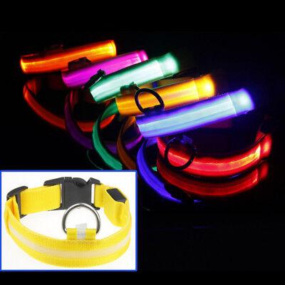 USB Rechargable LED Dog Pet Collar Flashing Luminous Safety Light Up Nylon 2