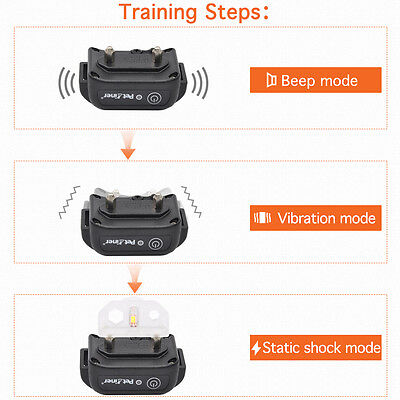 Petrainer Waterproof Rechargeable Dog Training Collar Shock Collar with Remote 3