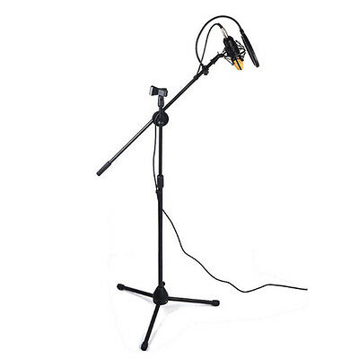 Professional Boom Tripod Microphone Mic Stand Holder Adjustable Black + 2 Clips 5