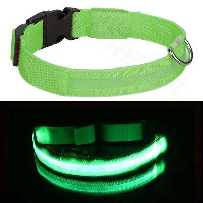 USB Rechargable LED Dog Pet Collar Flashing Luminous Safety Light Up Nylon 12