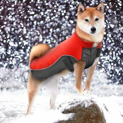 UK Reflective Waterproof Dog Coats Winter Warm Padded Pet Puppy Clothes Jacket 4