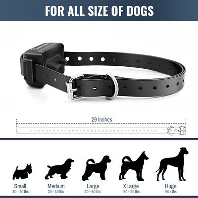 Petrainer Dog Training Shock Collar With Remote Waterproof Rechargeable E Collar 8