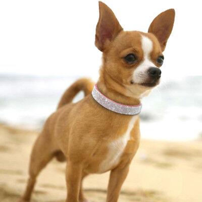 Collar para perro o gato de cuero de piel con purpurina y cristales Brillantes 12