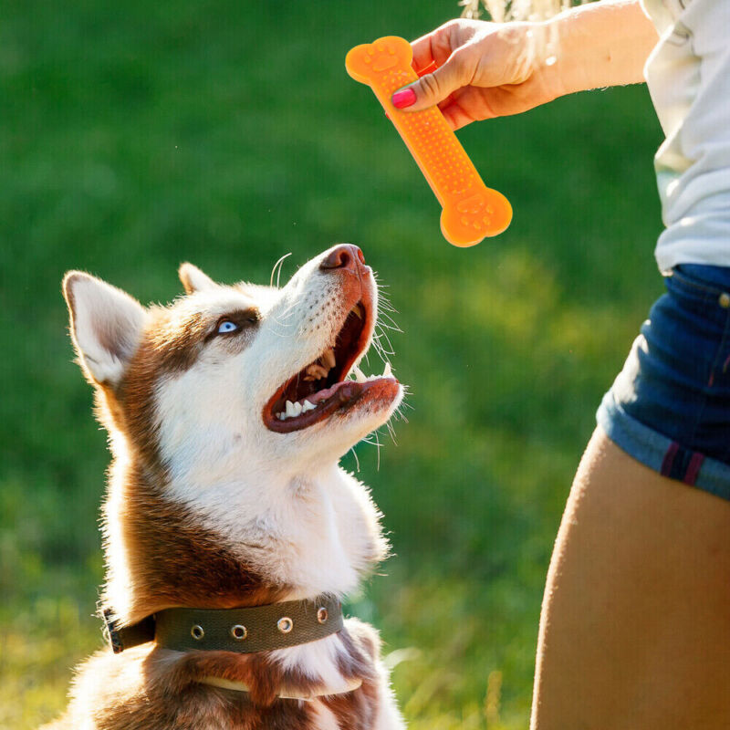 Durable Dog Chew Toys—Rubber Bone toy for Aggressive Chewers— Indestructible 5