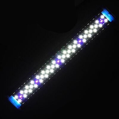 4W 6W 8W Adjustable Aquarium Fish Tank LED Light Over Head White & Blue Model 2