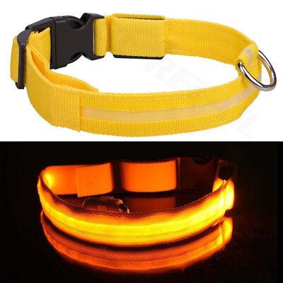 USB Rechargable LED Dog Pet Collar Flashing Luminous Safety Light Up Nylon 11
