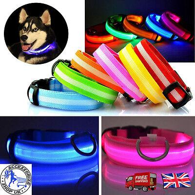 LED Dog Pet Collar Flashing Luminous Adjustable Safety Light Up Nylon Tag 2