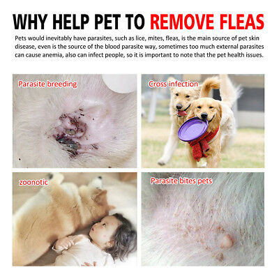 Dewel Flea and Tick Collar for Medium Large Dogs Over 18lbs 8 Month Protection 5
