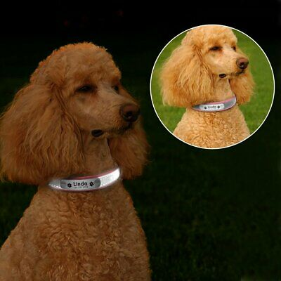 Leather Personalized Dog Collar Pet Cat Custom Name Tags Adjustable Reflective 7