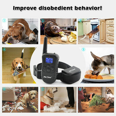 Petrainer Rechargeable Electric Dog Training Collar Shock Collar With LCD Remote