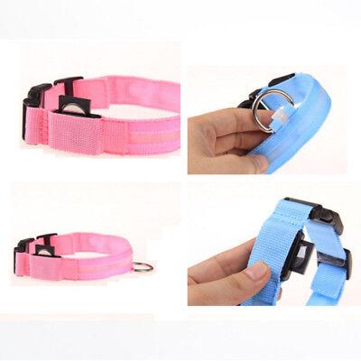 USB Rechargable LED Dog Pet Collar Flashing Luminous Safety Light Up Nylon 5